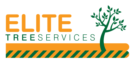 Elite Tree Services (East Anglia) Limited