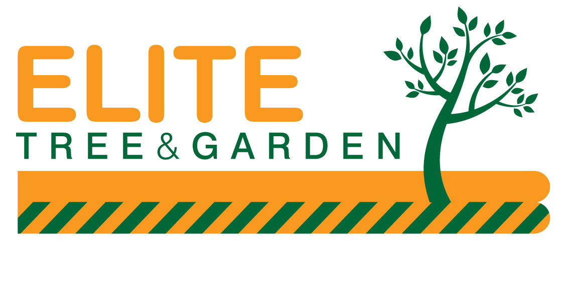 TREE-AND-GARDEN-SERVICES-ON-WHITE