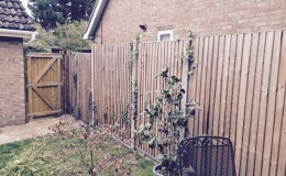 Viking heights weatherboard fence