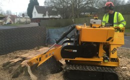 20 Dunmow Road Day 2 first thing Grinding the stump