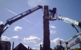 7 Bucklesham Road Cedar Honey Fungus – crane and platform early pm
