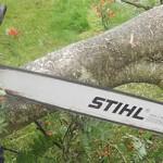 Long Stihl snedding