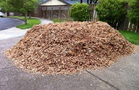 Pile of wood chip