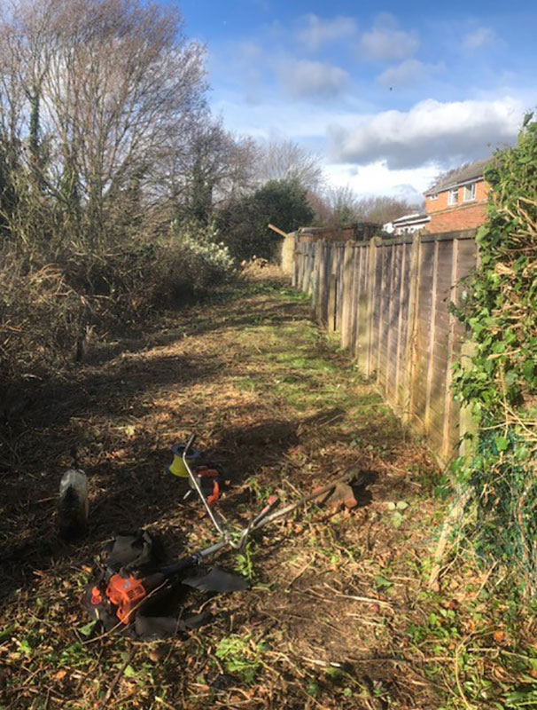 Ipswich-Fence-Clearance