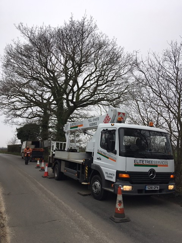 Kirton, Oak Tree Reduction
