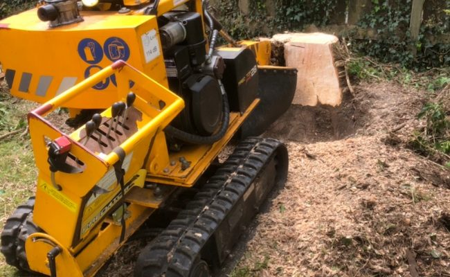 Sproughton, Ipswich – Stump Grinding 2