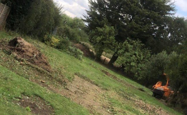 Ashboking Garden Clearance after landscape