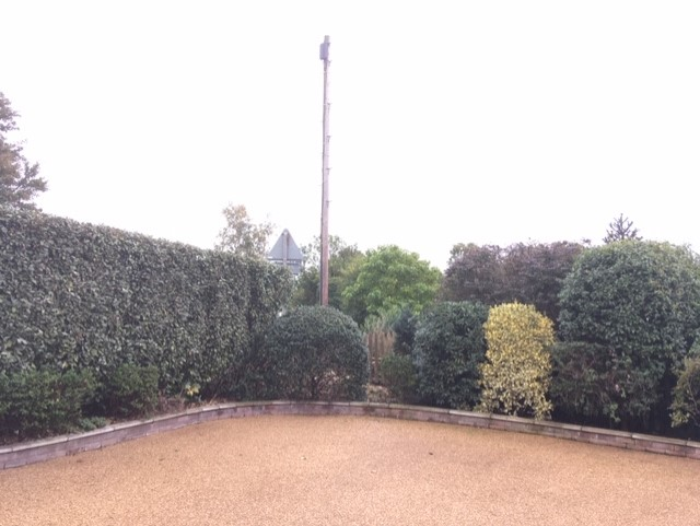 Bramford, Ipswich – Conifer After