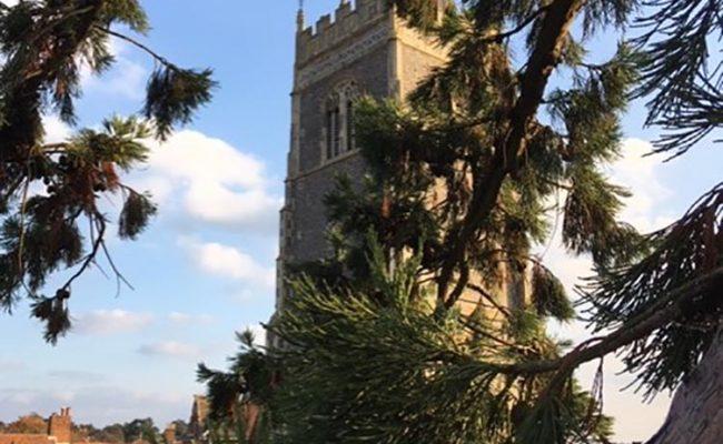 Redwood by Church Woodbridge 2