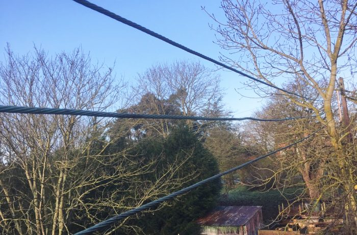 Tree work at a regular customers rear garden to remove power line interference