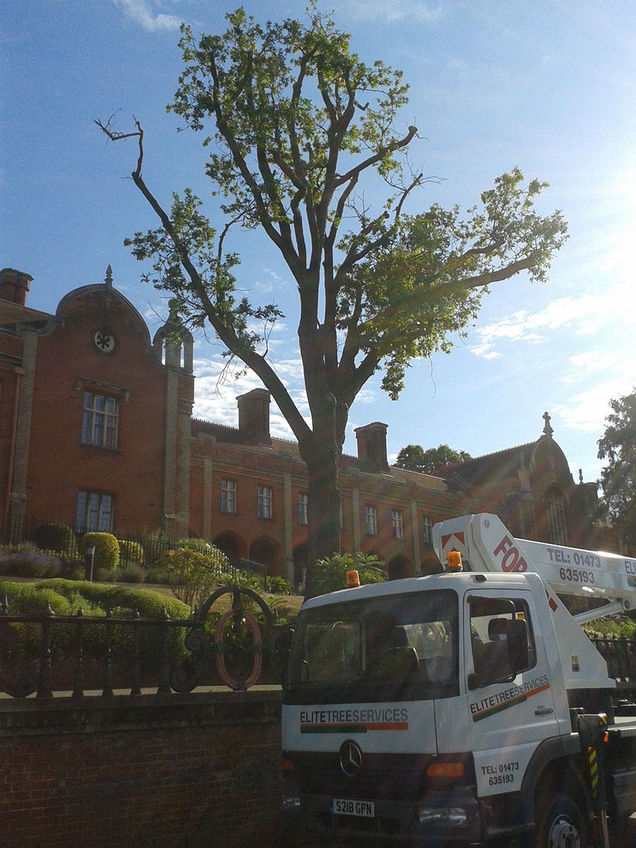 1-Seckford-Almshouses-20150702_0806141