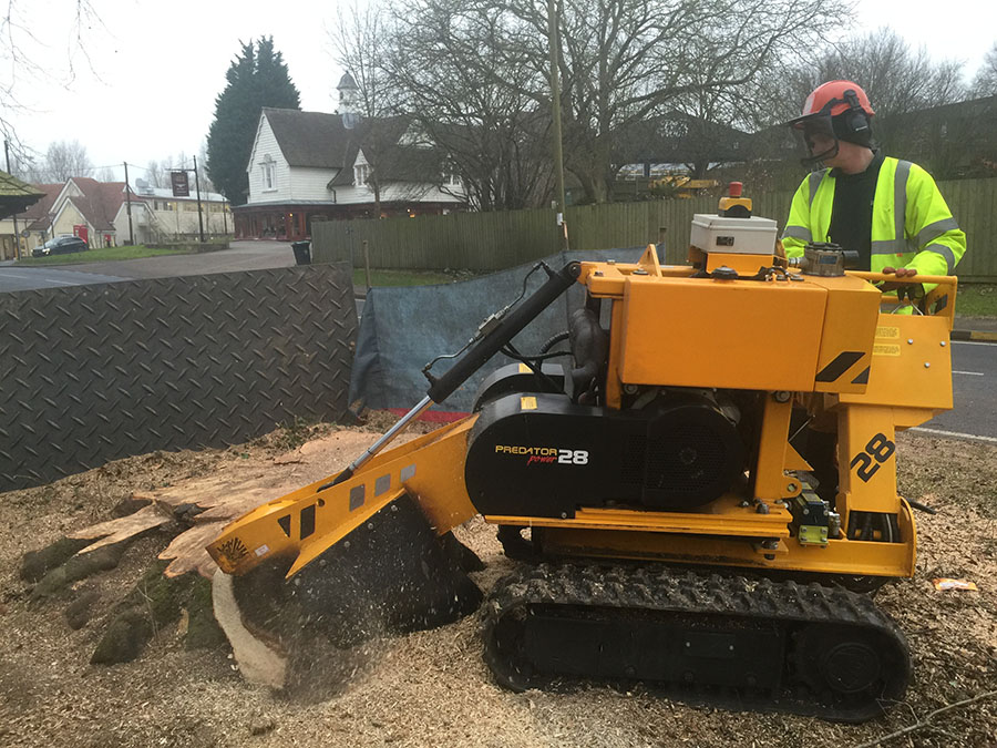 20-Dunmow-Road-Day-2-first-thing-Grinding-the-stump-