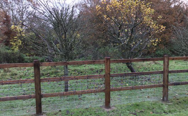 Fencing-3-650x400