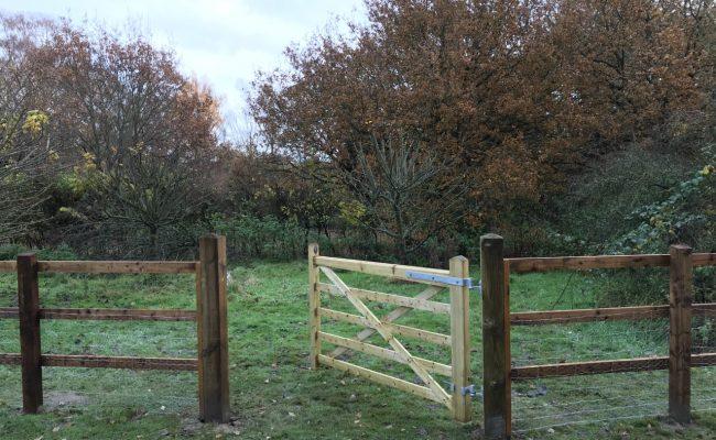Fencing-4-650x400